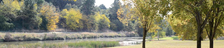 Riverbank-Park-Yass